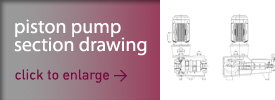 Piston Pump typical section drawing